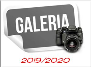 galeria_2019